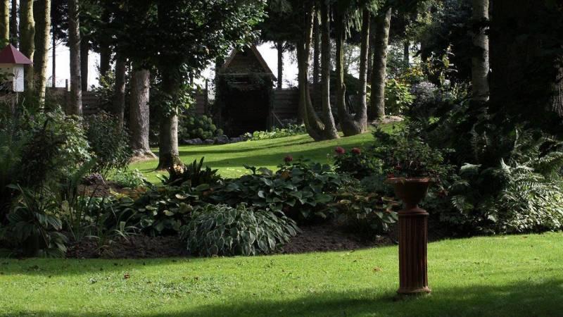 Jardin dans la pénombre
