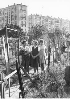 Willy Ronis, Jardins ouvriers de Bagneux (Hauts-de-Seine), 1959.