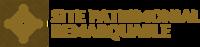Logotype SPR pour édition 40mm RVB ombre